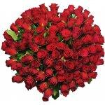 100 Růží Rhodos