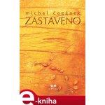 Zastaveno. Poetický román o cestě za poznáním - Michal Čagánek e-kniha