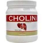 Nutristar Cholin 500 tbl.
