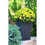 KETER plastový květináč Rattan planter S
