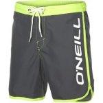 O'Neill PM frame logo shorts tmavě šedá