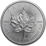 Maple Leaf stříbrná mince 1 Oz 2014