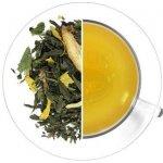 Oxalis Ledový čaj Limeta aloe 1 kg
