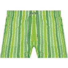 Neonové pánské šortky na plavání Lorin zelené