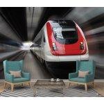 Coloriqa fototapeta Přední strana vlaku s efektem rozostření 2835 Materiál: Vliesová tapeta, Rozměr: 152,5 x 104 cm M