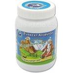 Everest Ayurveda Ajurvédský bylinný elixír Chyawanprash 300 g