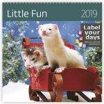 Kalendář nástěnný 2019 - Little Fun