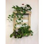 PLASTIA Paleta pro vertikální pěstování rostlin 60 x 80 cm