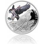 Česká mincovna Stříbrná mince Ohrožená příroda Raroh velký proof 16 g