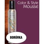 Omeisan Color & Style Mousse tužidlo (borůvka) 200 ml