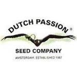 Dutch Passion Orange Bud 10 ks