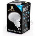 Nedes LED žárovka Reflektorová R50 7W E14 6000K Studená bílá 640lm