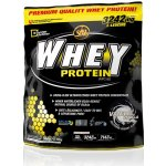 All Stars Whey Protein 500 g
