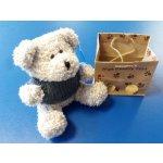 Medvídek s kapucí v papírové tašce šedý
