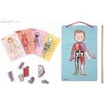 JANOD 05491 magnetická anatómia BODYMAGNET 76 magnetov+18 kariet+1 ukazovátko 7 12 rokov