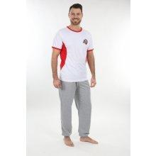 EVONA Pánské sportovní kalhoty ZLATAN šedé
