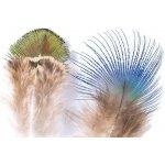 09a27004c917 Veniard Peacock Feathers Paví peří Gold Body