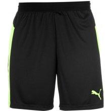 Puma Evo Train Shorts Mens Black/Green