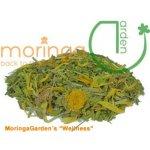 MoringaGarden Tenerife BIO čaj Wellnesstee 100 g