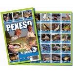 Pexeso: S Jakubem na rybách