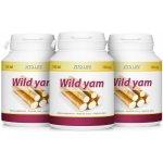 Vito Life Wild Yam 3 x 100 tablet