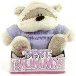 Medvídek Fizzy Moon Special Mummy