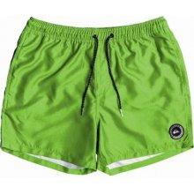 262a4c79ab Dětské koupací šortky Quiksilver EVERYDAY VOLLEY YOUTH 13 GREEN GECKO L