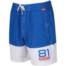 0085a4c20d53 Pánské Regatta Brachtmar II 8X1 modrá