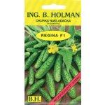 Okurka nakládačka Holman - Regina F1 hr 2,5g