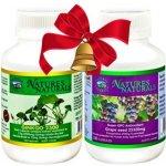 Australian Remedy Ginkgo 2500 100 cps. + Super OPC antioxidant 100 cps.