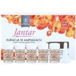 Farmona Jantar intenzivní kúra pro velmi poškozené vlasy (with Amber Extract) 5 x 5 ml