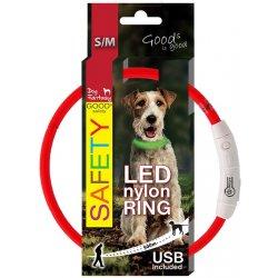 Dog Fantasy obojek Svítící LED