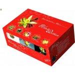 Biogena Winter Edition dárková kazeta ovocných čajů 6 x 10 x 2.5 g