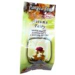 Pangea kvetoucí čaj Podzimní víla 1 ks