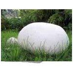 Pýchavka (Vatovec) obrovská sadba 250g