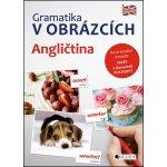 Gramatika v obrázcích: Angličtina - Brian Melican
