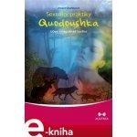 Sexuální praktiky Quodoushka. Učení z nagualské tradice - Amara Charlesová e-kniha
