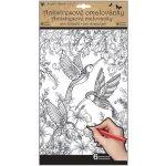 Kreativní omalovánky Motýli a ptáci 6 motivů, 6 listů 36,5 x 21,5 cm