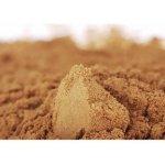 Energie života BRAHMI extrakt 50% bacopasidů 20 g