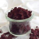 Health Link Bio Borůvkový prášek 80 g