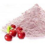 Hlavnězdravě Acerola prášek 100 g