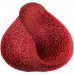 BLACK Sintesis Barva na vlasy - Magma 5-665 100 ml