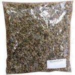 Seva - Seed Krmná řepa červená Rekord Poly 200 g