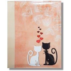 Pěkná černá kočička galerie