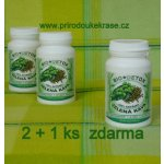 Bio Detox Zelená káva Green Coffee 5000 mg 300 tbl.