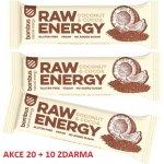 Bombus RAW energy 20x50 g