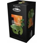 Drana Magical Garden pomeranč ginkgo 20 x 2.5 g