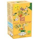 HARI TEA BIO Sluneční čaj ranní Stoupej čaje 16 x 2 g