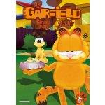 Garfield Show - 15. DVD