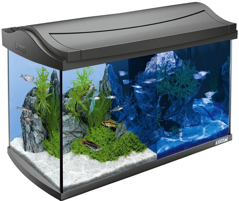 akv rium tetra aquaart led akvarijn set 60 l seznamzbo cz. Black Bedroom Furniture Sets. Home Design Ideas